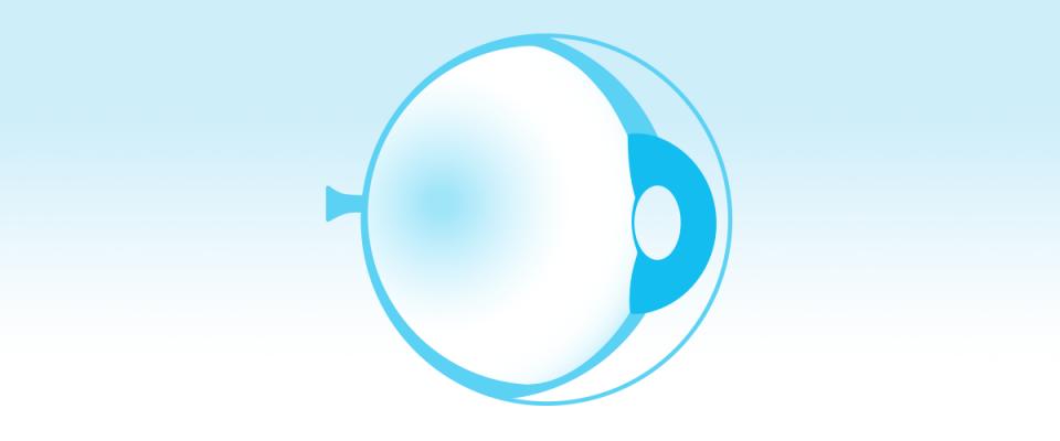 Retinal Degenerative Diseases icon
