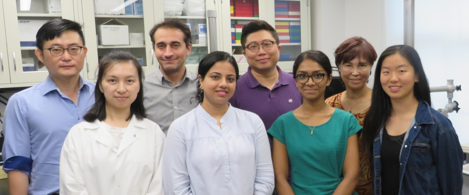 Photo of research team in Cho Lab