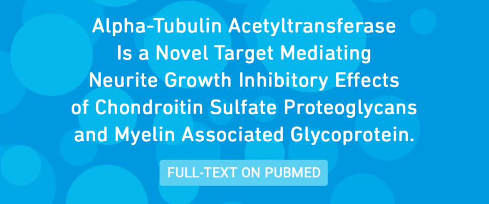 Alpha-Tubulin Acetyltransferase Is a Novel Target Mediating Neurite Growth Inhibitory Effects of Chondroitin Sulfate Proteoglycans and Myelin Associated Glycoprotein.
