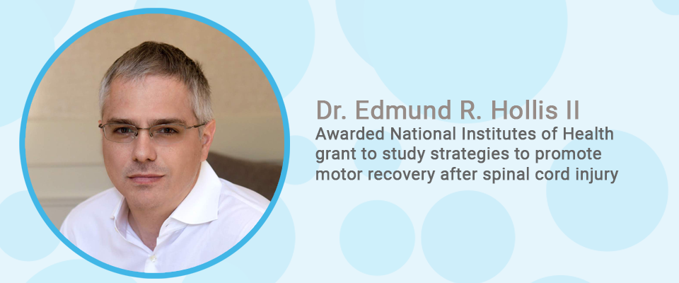 Dr. Edmund R. Hollis IIAwarded National Institutes of Health grant to study strategies to promote motor recovery after spinal cord injury
