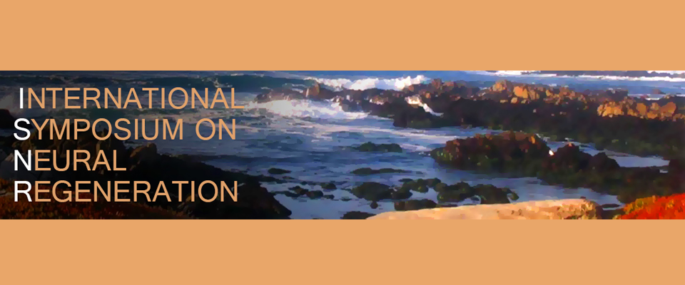 International Symposium on Neural Regeneration