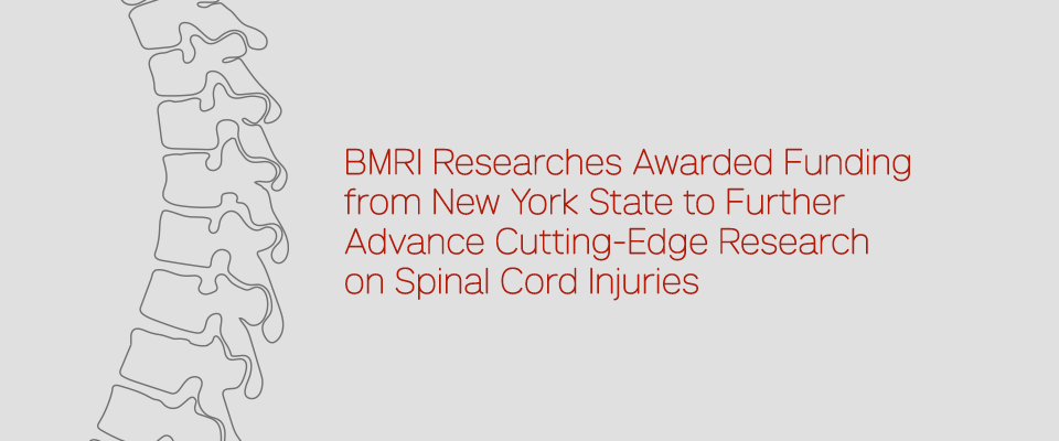 BMRI Researchers Awarded Funding from New York State