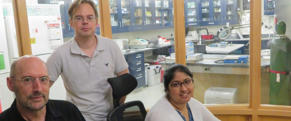 Drs. Prusky, Hill, and Alam