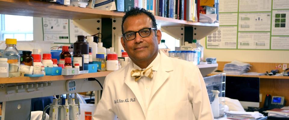 Dr. Ratan in his lab