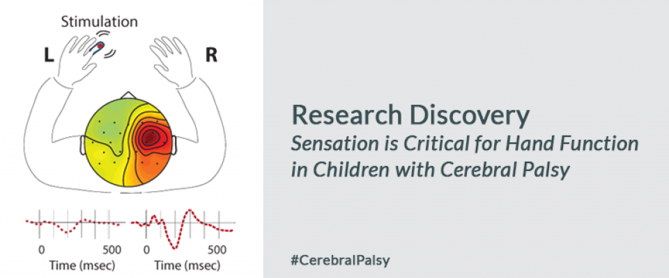 Researchers Discover a Novel Factor in Restoring Hand Function in Children with Cerebral Palsy