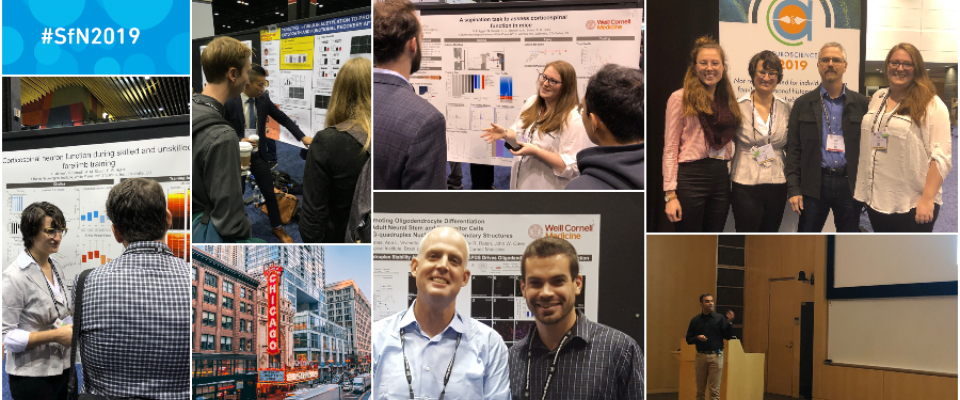 BNI at SfN 2019