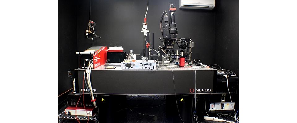 Two-Photon Microscope (Thorlabs)   Burke Neurological Institute