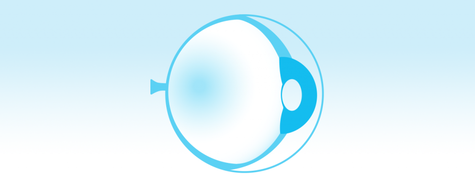 Retinal Degenerative Diseases icon