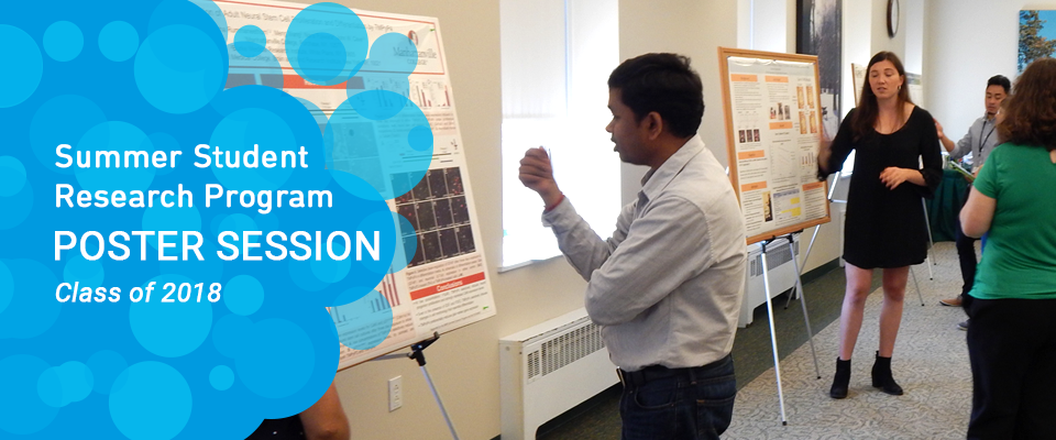 Summer Student Poster Session 2018