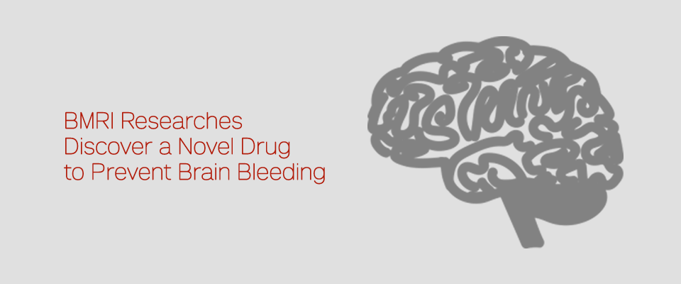 BMRI Researchers Discover a Novel Drug to Prevent Brain Bleeding
