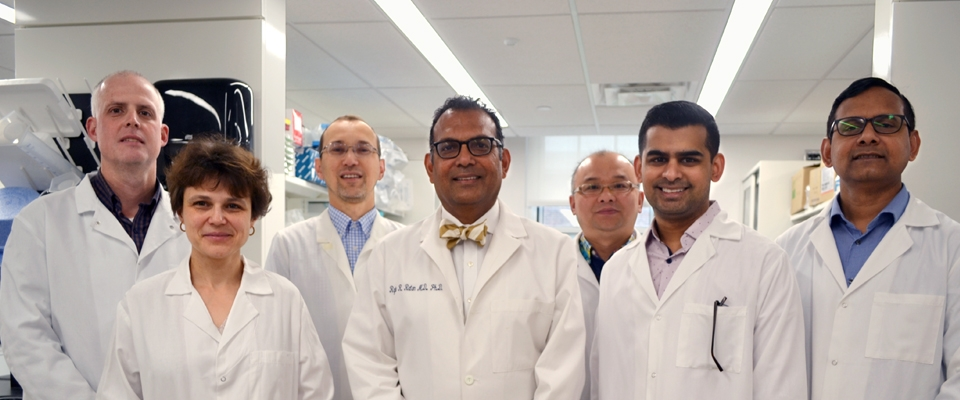 A team of scientists at the Burke Neurological Institute