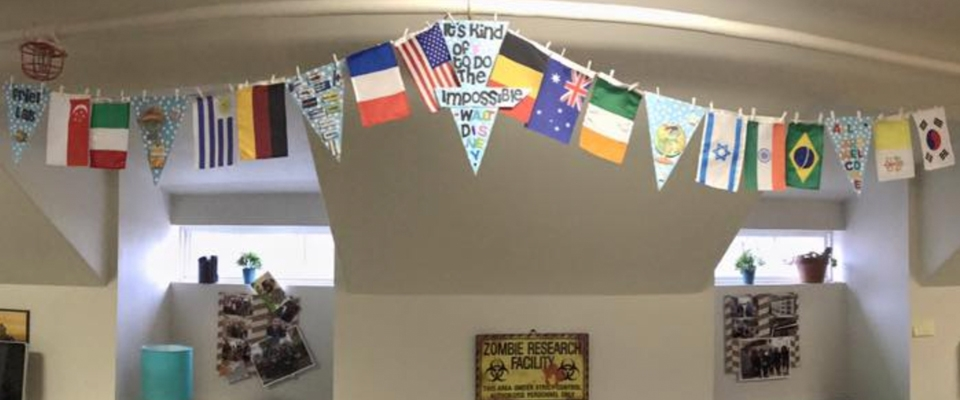 String of flags in Friel Lab