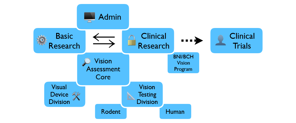 Diagram for Center for Vision Repair